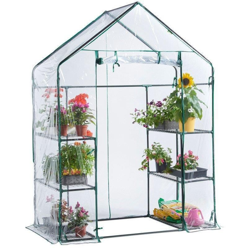 Spacious Walk In Greenhouse Small Garden Plants 6 Shelves Pvc Cover Steel Frame Walk In Greenhouse Greenhouse Gardening Cold Frame Gardening