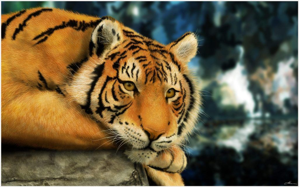 Bengali Tiger Wallpaper