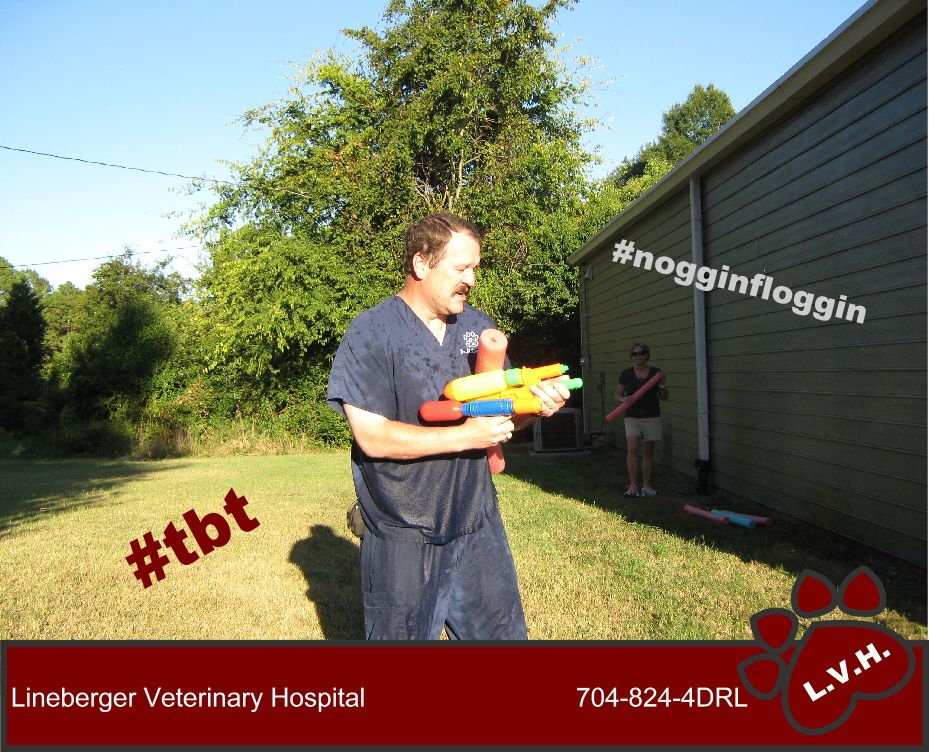throwbackthursday nogginfloggin Veterinary hospital