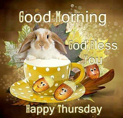 Good Morning God Bless You Happy Thursday Mornings Noon And