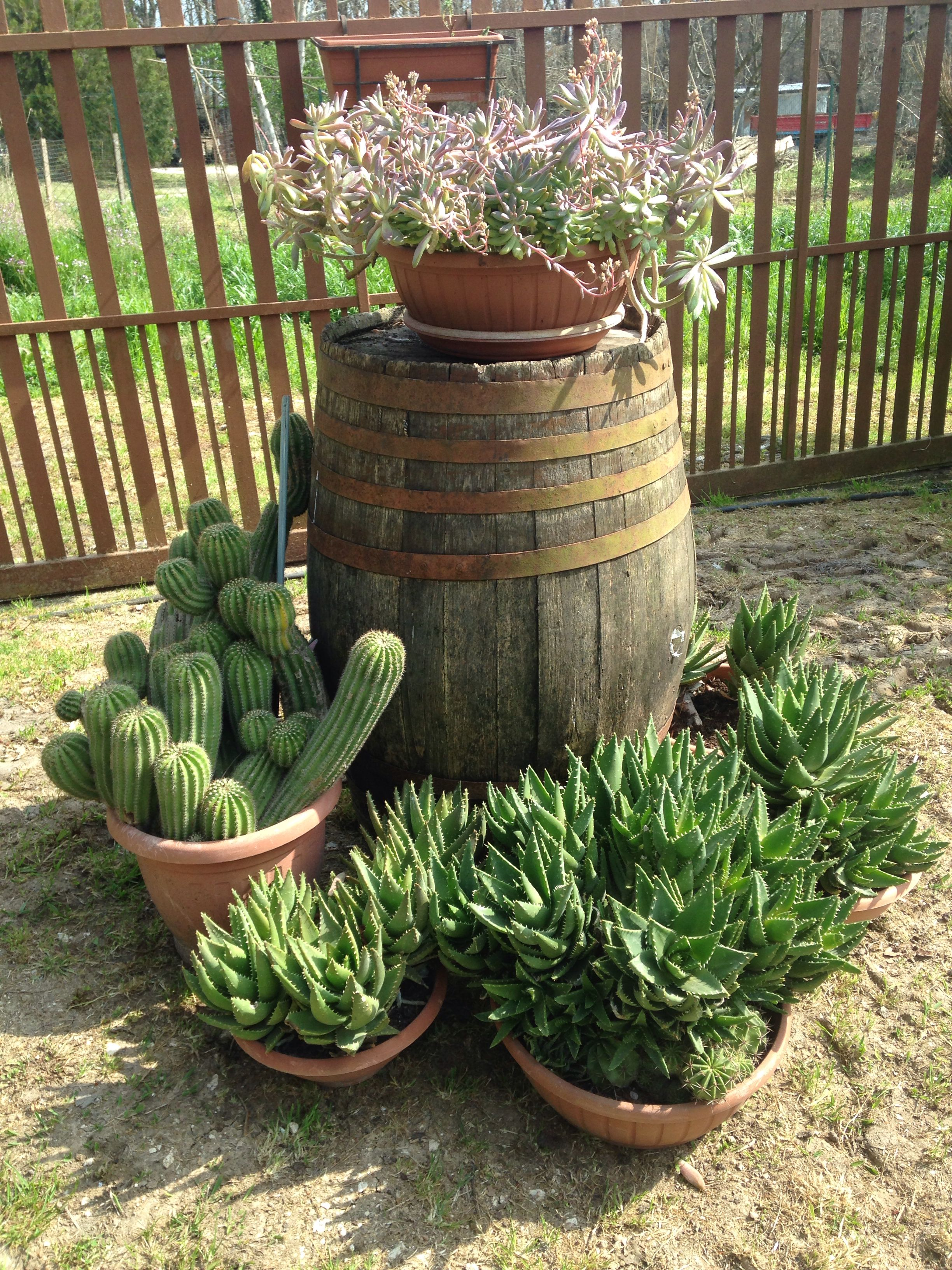 What you can do with an old wine barrel