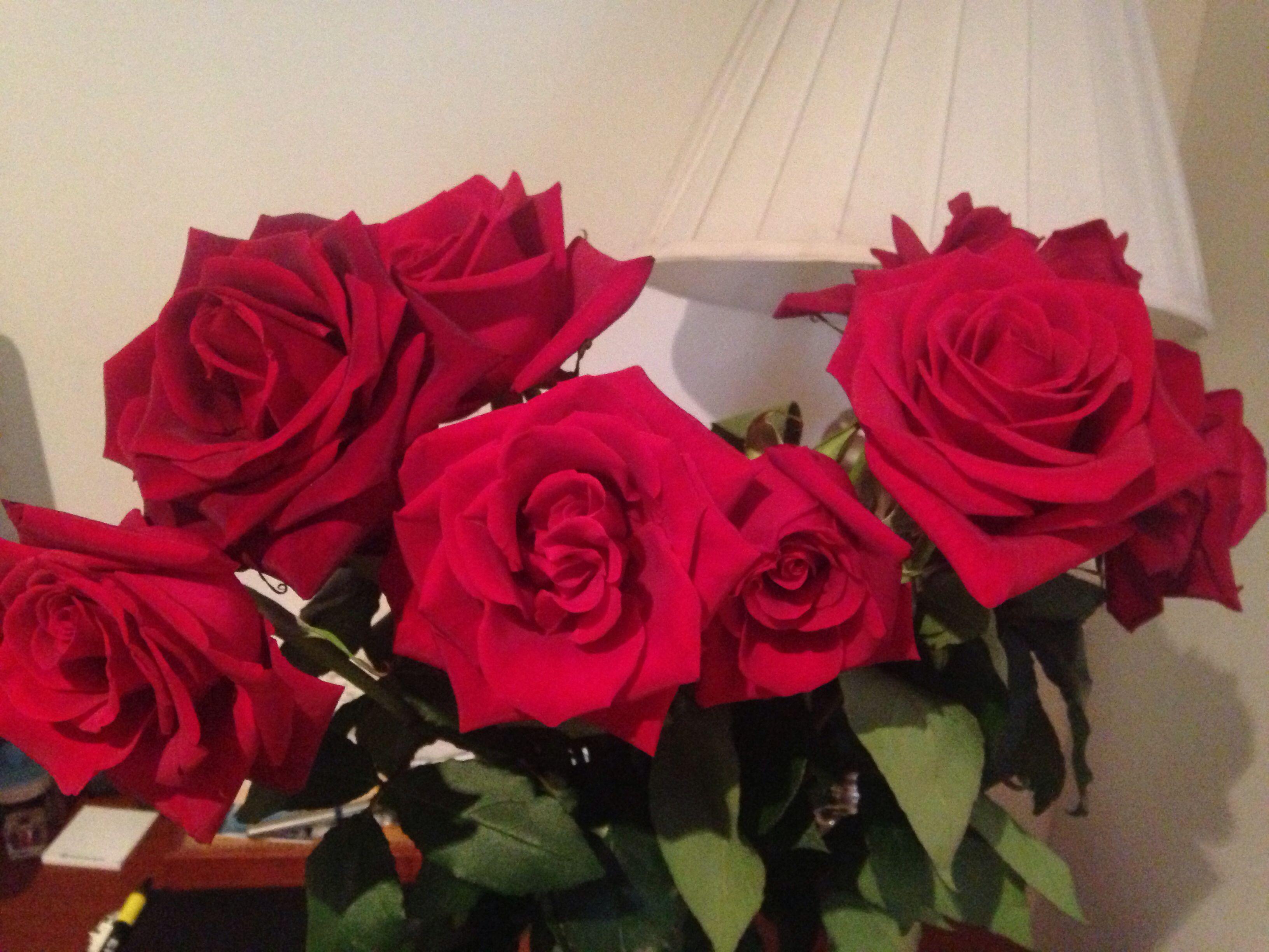 Las flores más hermosas son las que son recibidas con el alma