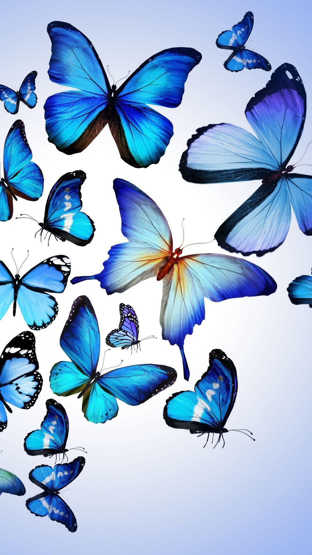 Blue Butterflies Wallpaper iPhone | Blue butterfly ...