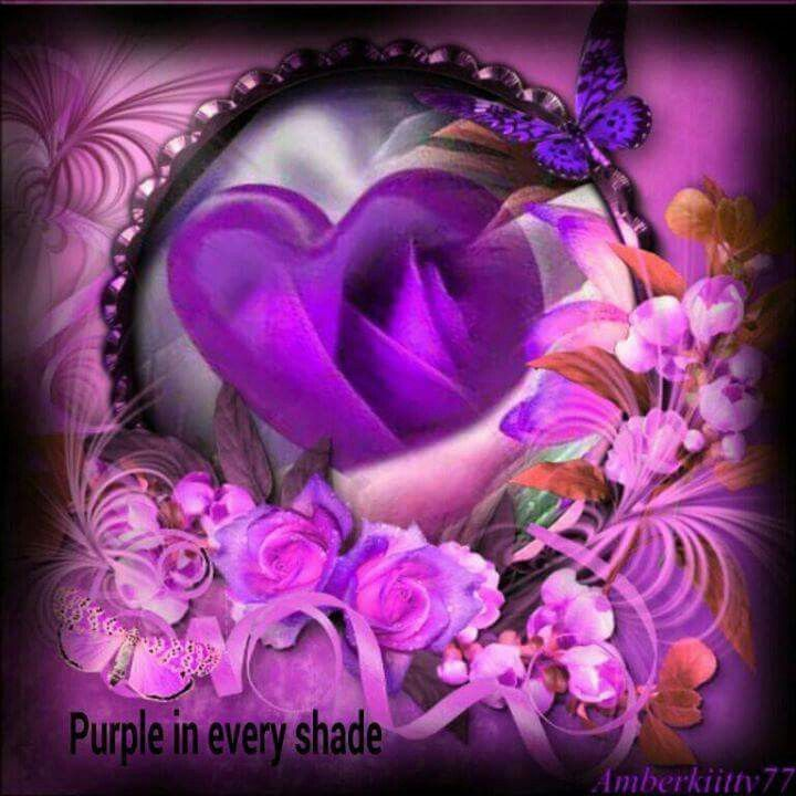 Purple Beautiful In Every Shade