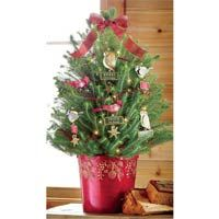 holiday tweets decorated live pine tree brecks gifts pre decorated christmas tree