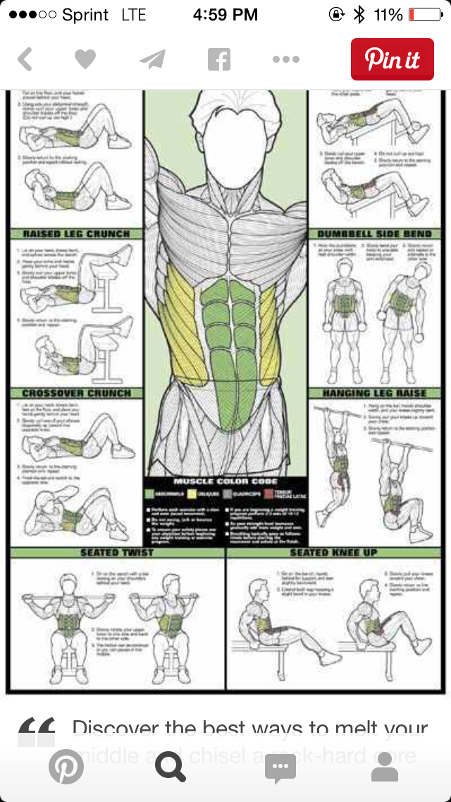 24 X 36 Algra Laminated Abdominal Workout Fitness Chart