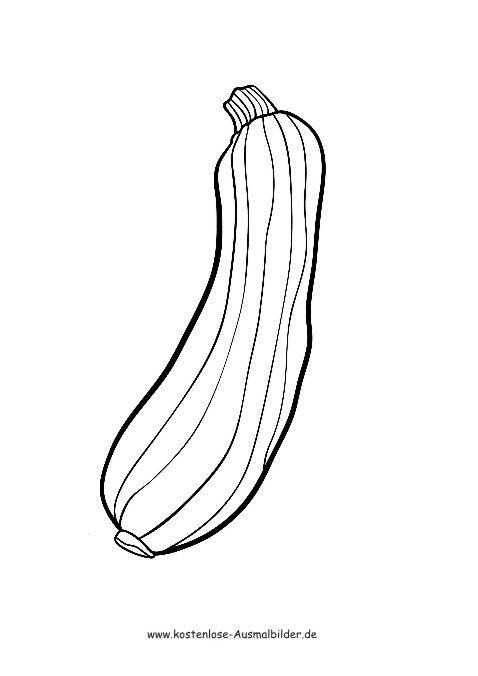 ausmalbilder  malvorlagen gemuese  zucchini
