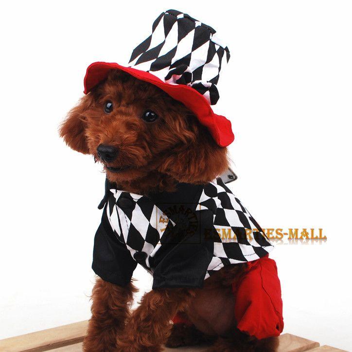 Pets Cosplay Magician Hat Pet Halloween Costumes