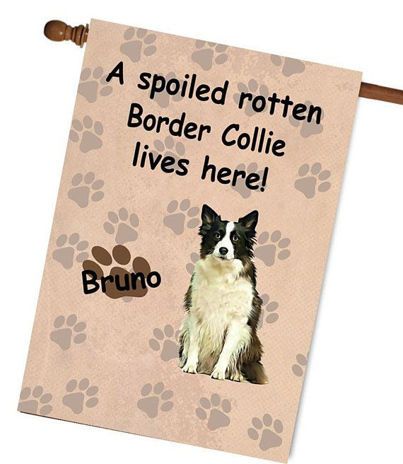 Border Collie Dog Garden Flag, Custom Dog Photo House Flag, Custom Border Collie Dog Garden Flag, Spoiled Rotten Border Collie Dog Flag is part of garden Borders To Keep Dogs Out - cotton outdoor quality fabric  Digitally printed on both sides of the fabric