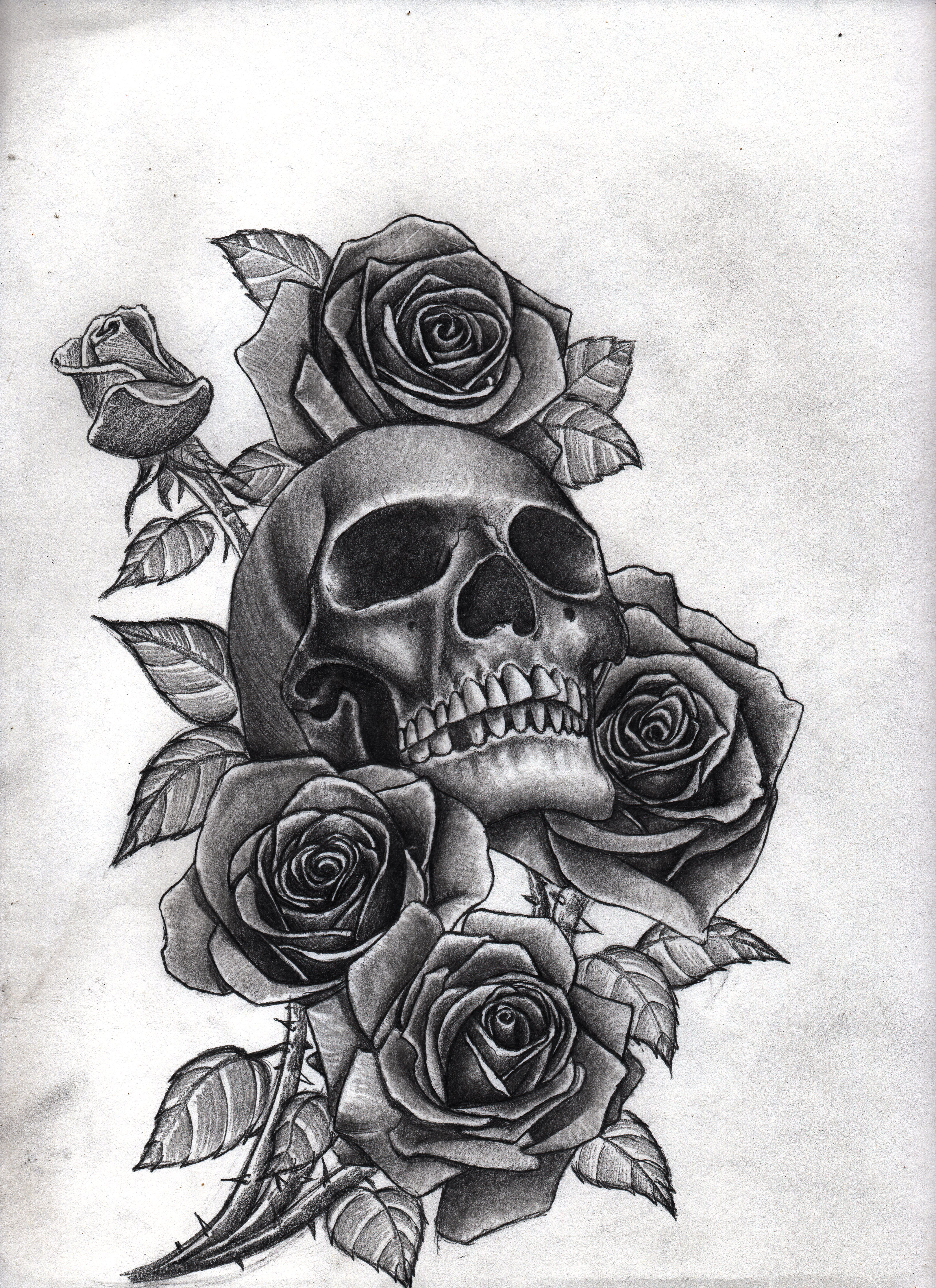 roses_and_skull_by_bobby_castaldi_art-d8jo10m.jpg 4,250 ...