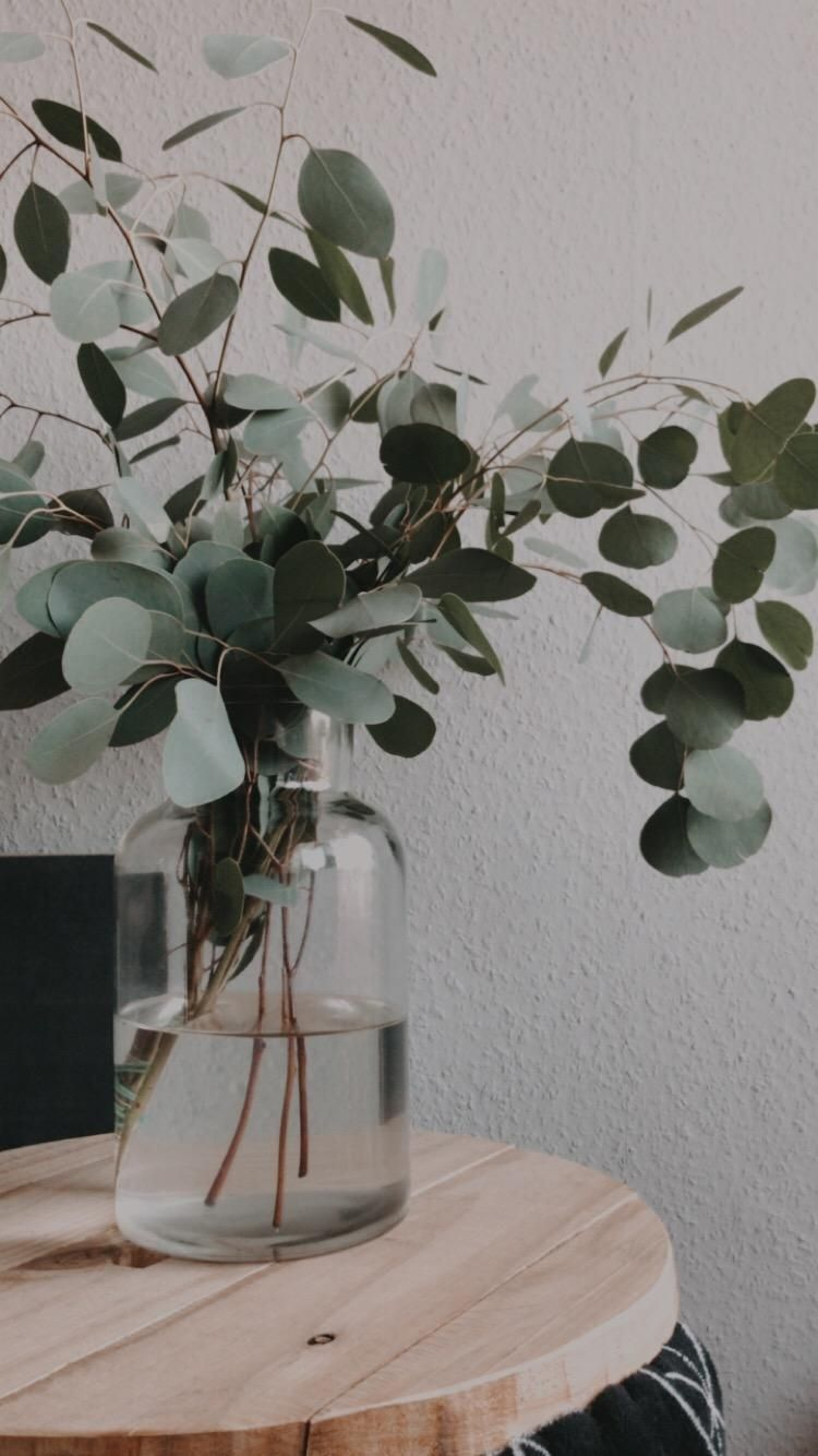 Photo of Eucalyptus-Addicted #eucalyptus #interior #decoration