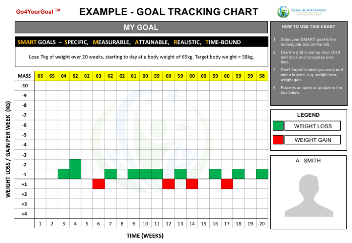 This Is An Example Of How To Use The Goal Tracking Template