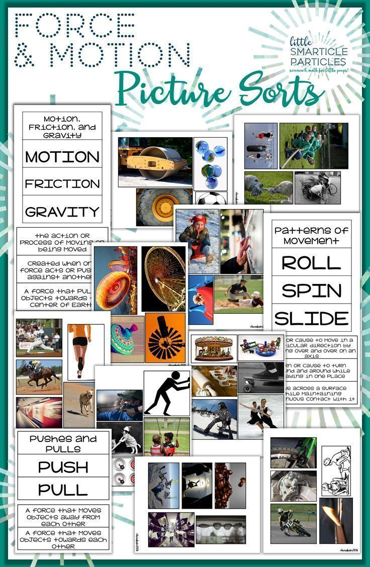 Force and Motion: Science Picture Sorts | Educational Finds and ...