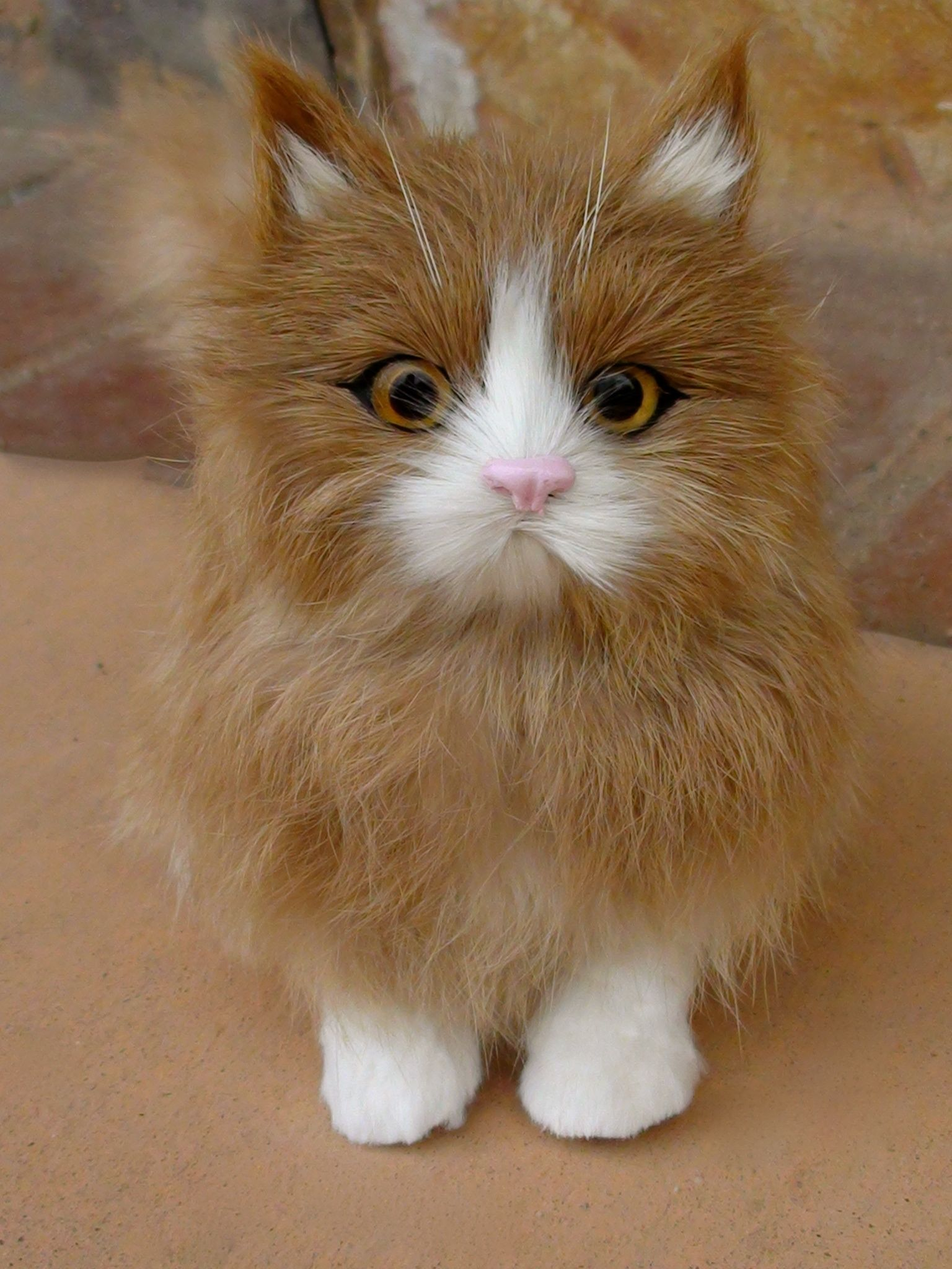 Get a realistic doll kitten pet for your American Girl at