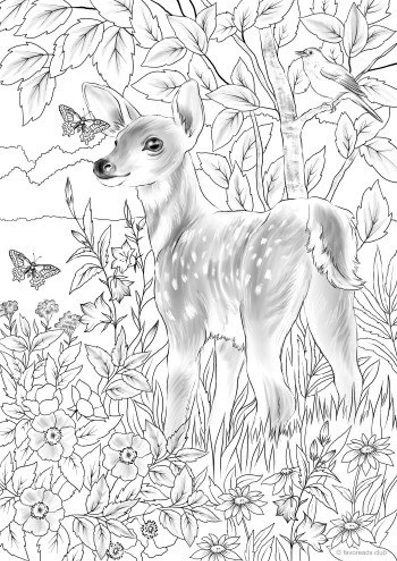Baby Deer - Printable Adult Coloring Page from Favoreads ...
