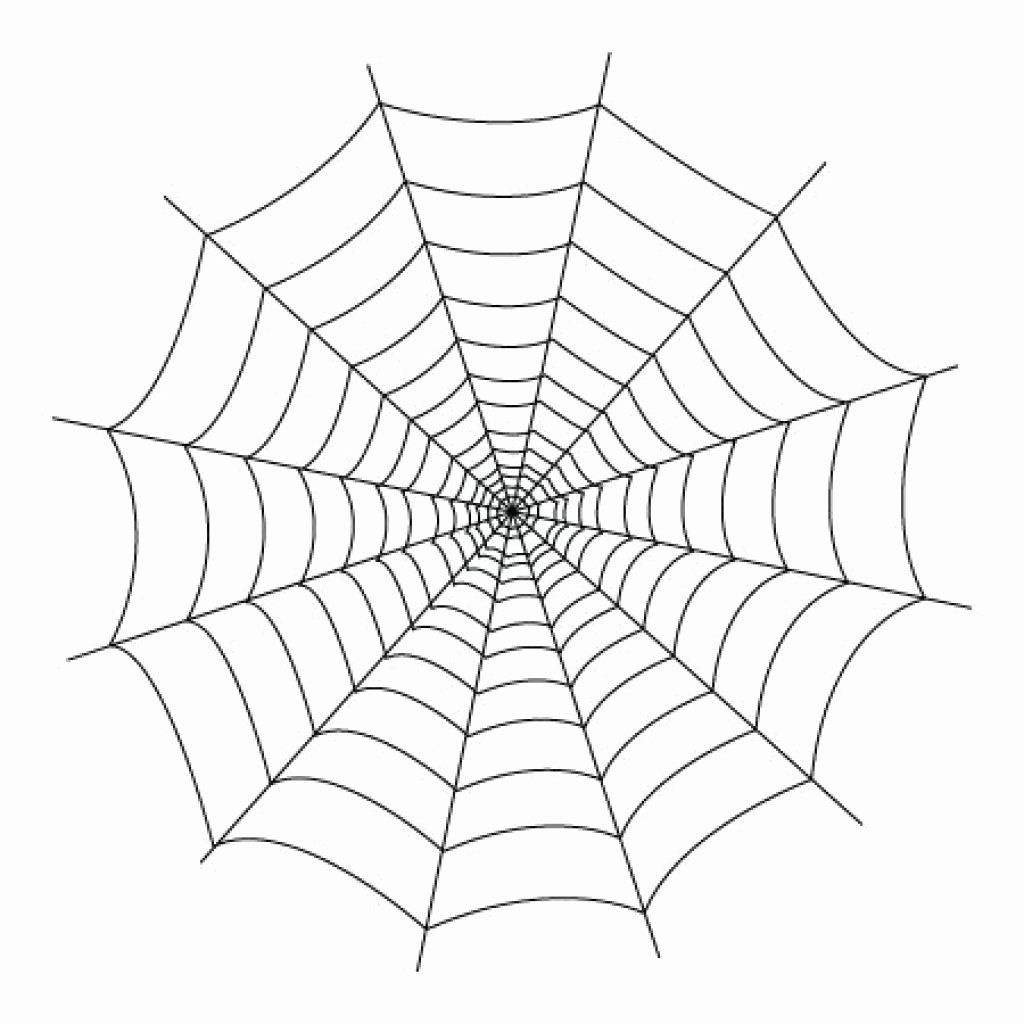Very Large Spider Web Coloring Page Color Luna Spider Coloring Page Coloring Pages Spider Web