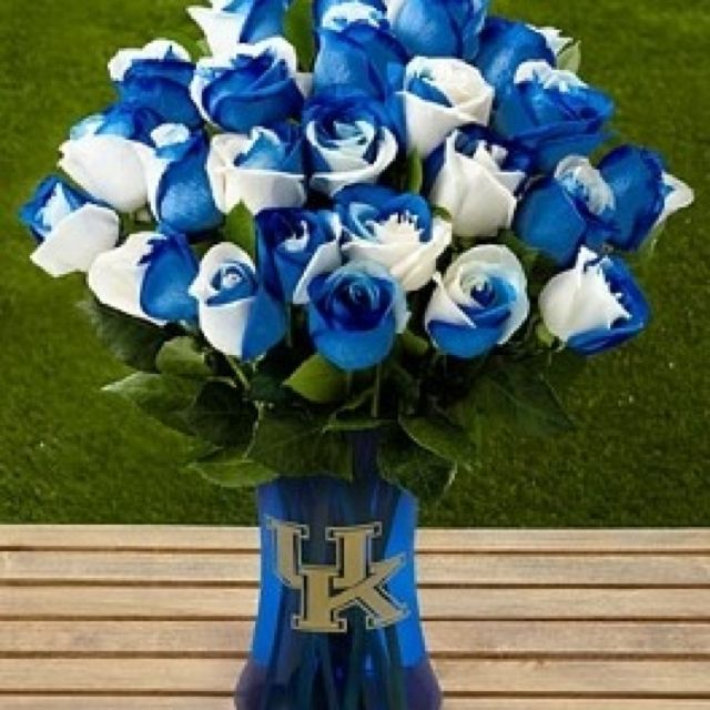 University Of Kentucky College Roses Ftd Blue Roses