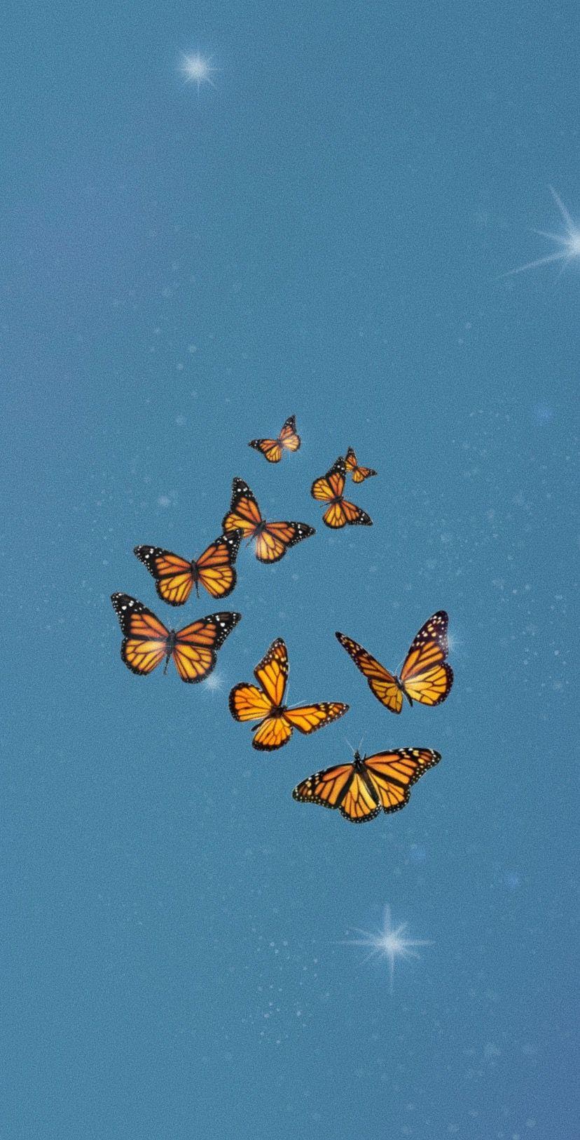 Butterflies Aesthetic Wallpaper In 2020 Butterfly Wallpaper Iphone Aesthetic Desktop Wallpaper Cute Patterns Wallpaper