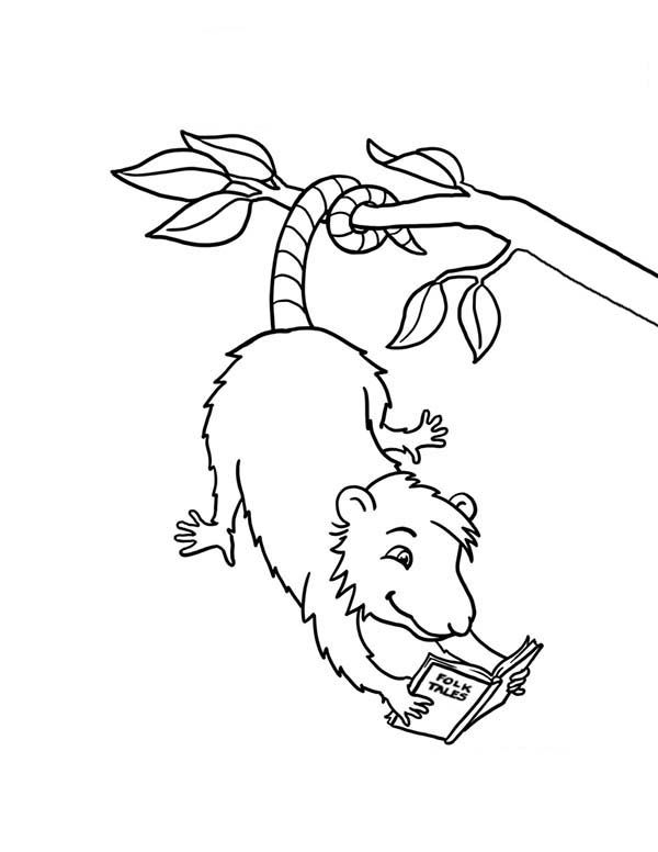 Possum Possum Reading A Book Coloring Page Coloring Books