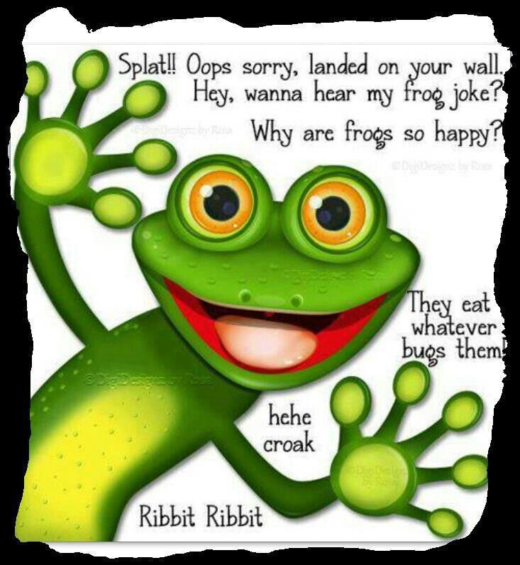 Cute Frog Quotes: Frog Quotes, Funny And