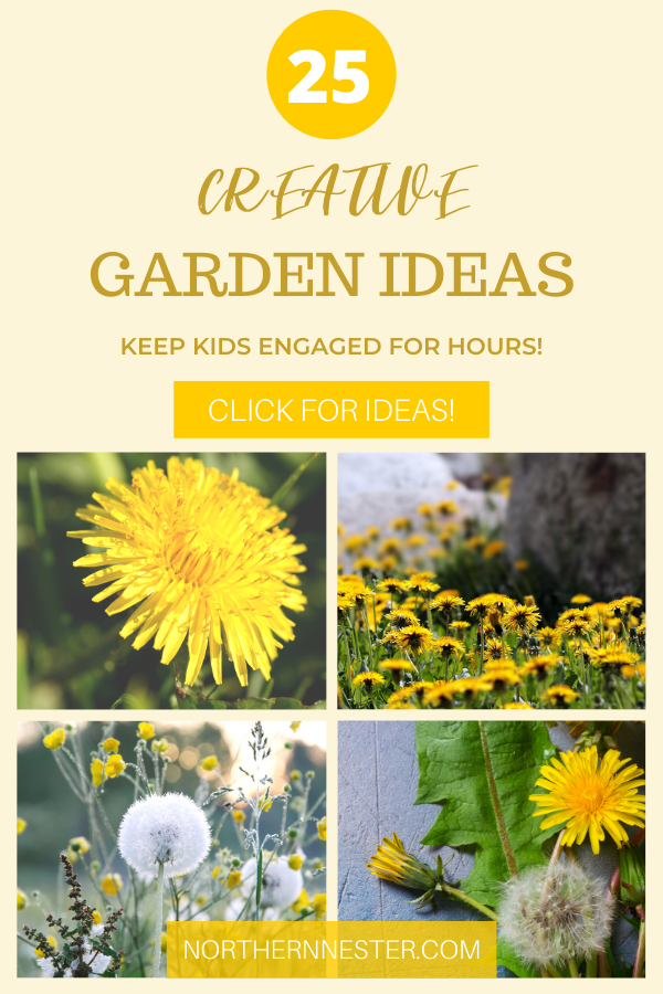 These 25 creative garden ideas are a fantastic source of inspiration if you are looking for more ways to engage with your outdoor space within the confines of a budget! Perfect for gardening beginners as well as gardening with kids! You won't believe all of the creative ways you can have in your garden! #creativegardenideas #gardenideas #gardening