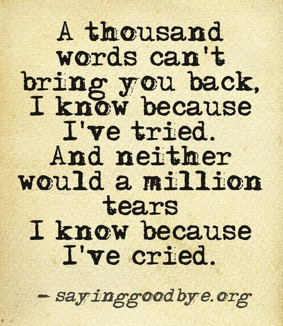I Love You Quotes: A Thousand Words Can't Bring You Back, I Know Because I've