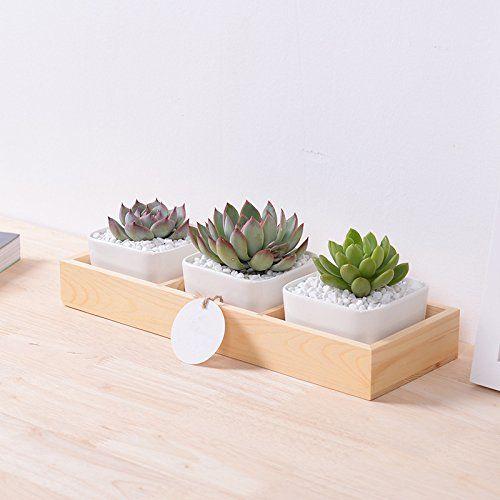 31 Pcs Modern Decorative Large White Square Ceramic Succulent Plant Pot 3 Flower Planters 1 Wooden Tray Flores De Madera Caja De Escritorio Decoracion De Unas