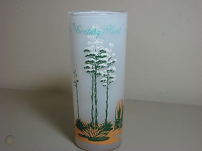 $20 2013 ARIZONA CACTUS CENTURY PLANT FROSTED ICED TEA GLASS-----BLAKELY OIL & GAS 1959   #491964570 #arizonacactus