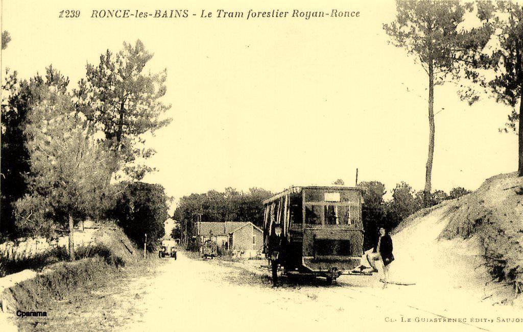 Royan Ronce Les Bains Le Tram Forestier 17 En 2020 Ronce