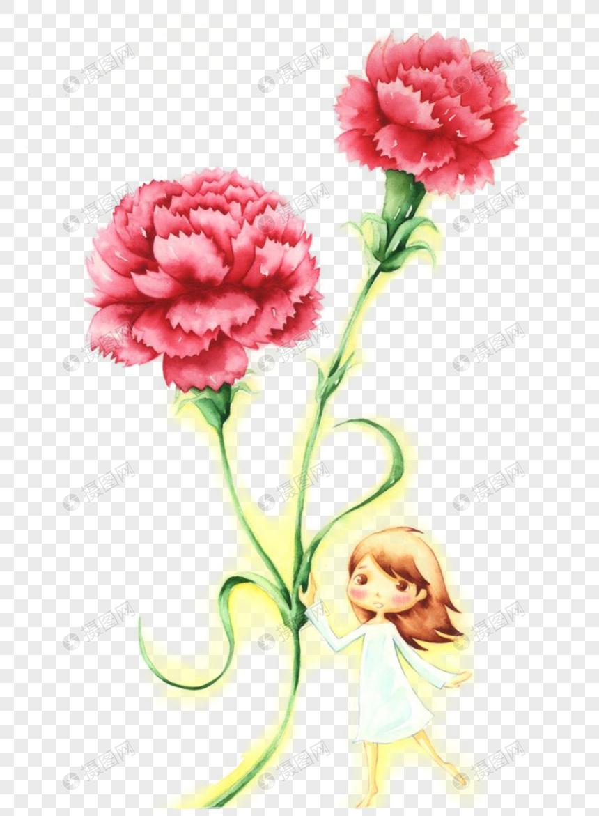 Carnation Carnation Carnation Flower Hand Painted Carnation Cartoon Carnation Flower Material Carnation Mat Web App Design Template Design Design Elements