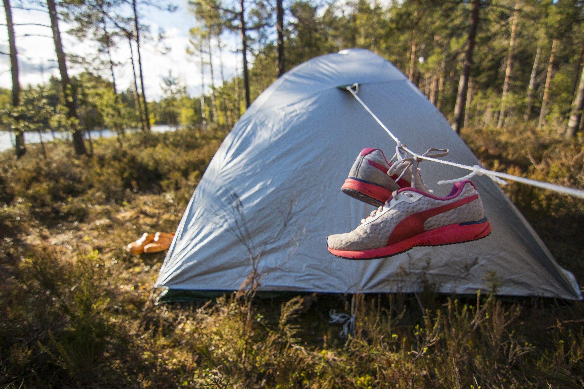 Isojärven kansallispuisto / Rinkkaputki http://www.stoori.fi/rinkkaputki/isojarvi/