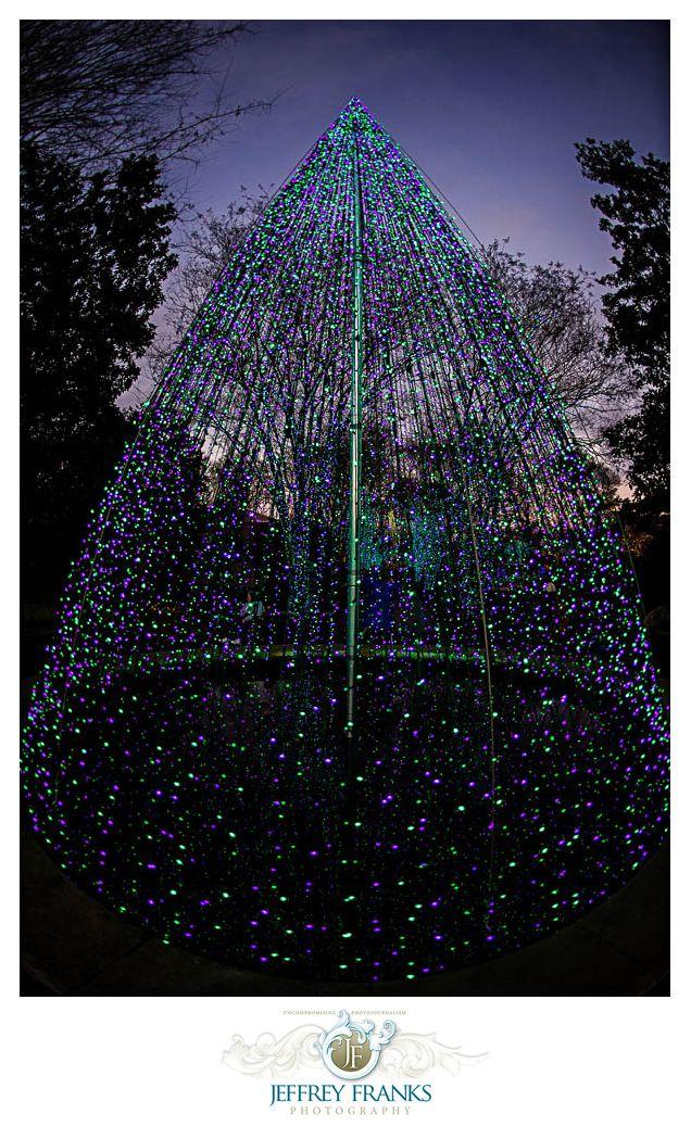 Pin on Atlanta Botanical Garden Garden Lights Holiday Nights
