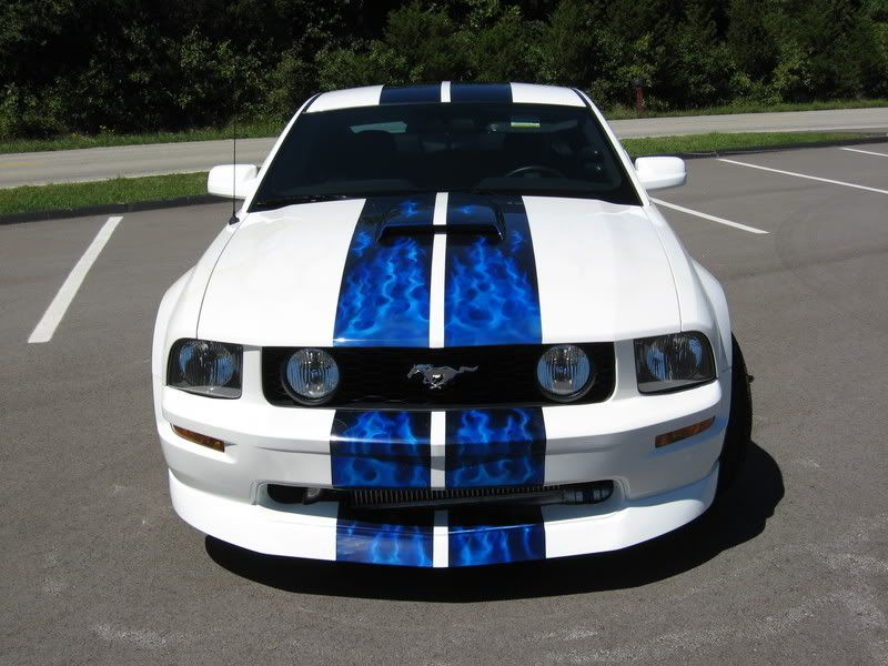 Mustang Awesome Electric Blue Paint Job