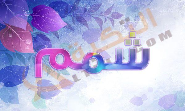 معنى اسم شمم في المعجم العربي اسم شمم من الأسماء المذكرة المحببة لدى البعض فعلى الرغم من انه غير منتشر ولكنة ي عرف في بعض العائلات الت Neon Signs Neon History