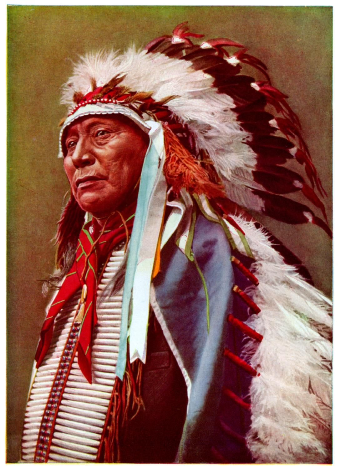 an essay on the american native the cherokee and choctaw Part i examines american indian employment rates, the native  membership  in the aleut, cherokee, and choctaw tribes also has strong.