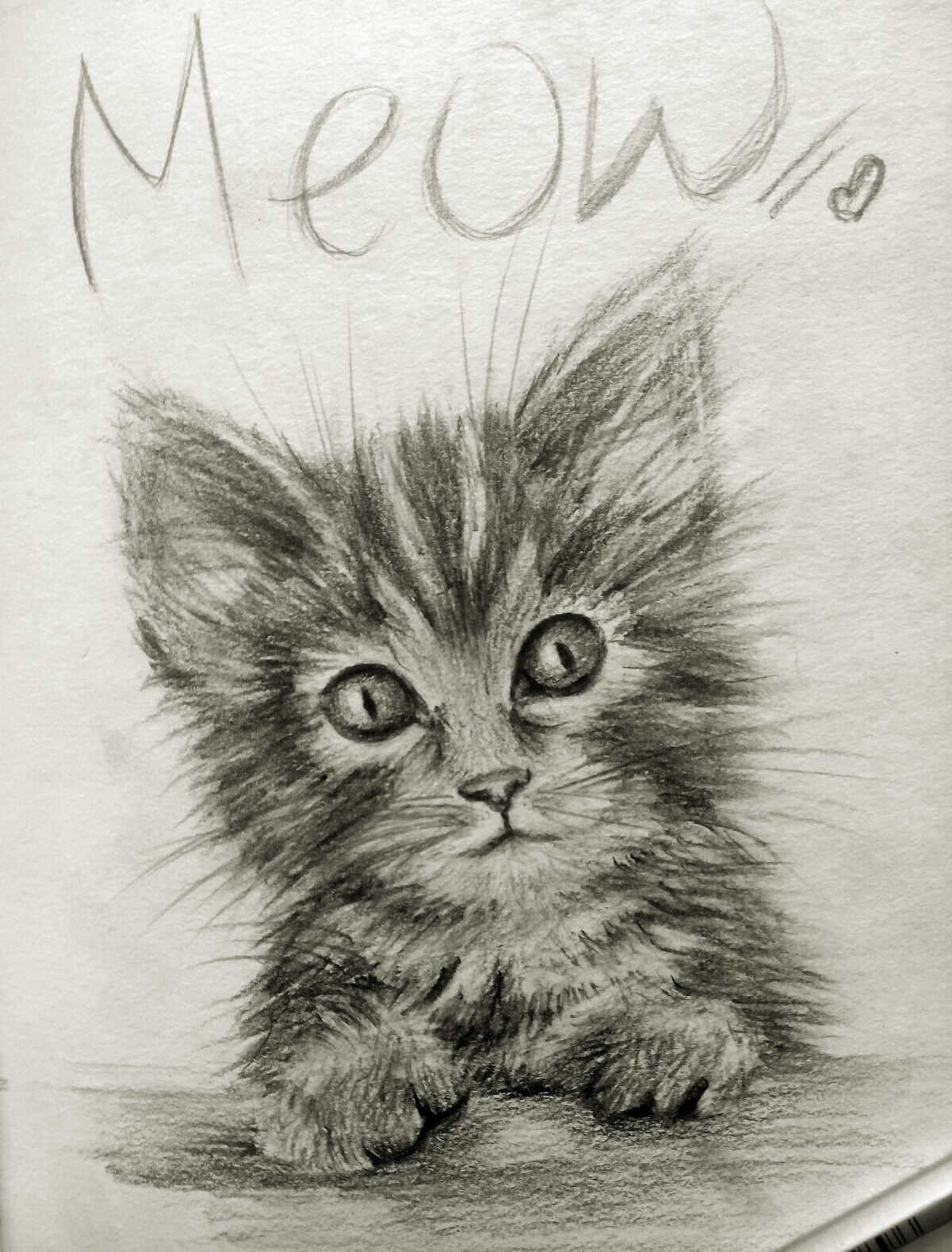 Kitten Drawing Pencil Cute Skethcbook Sketches Art Pencil Drawing Of A Kitten Kitten Art Pencil Drawings Kitten Drawing