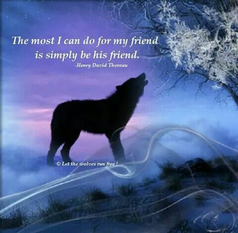 Lone Wolf Quotes Inspirational Speeches Native American Affirmations Prayer Advice Wolves Eid Americans
