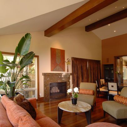 Rust Colored Walls Design Ideas Pictures Remodel And Decor Fabulous Living Room Decor Contemporary Family Room Family Room