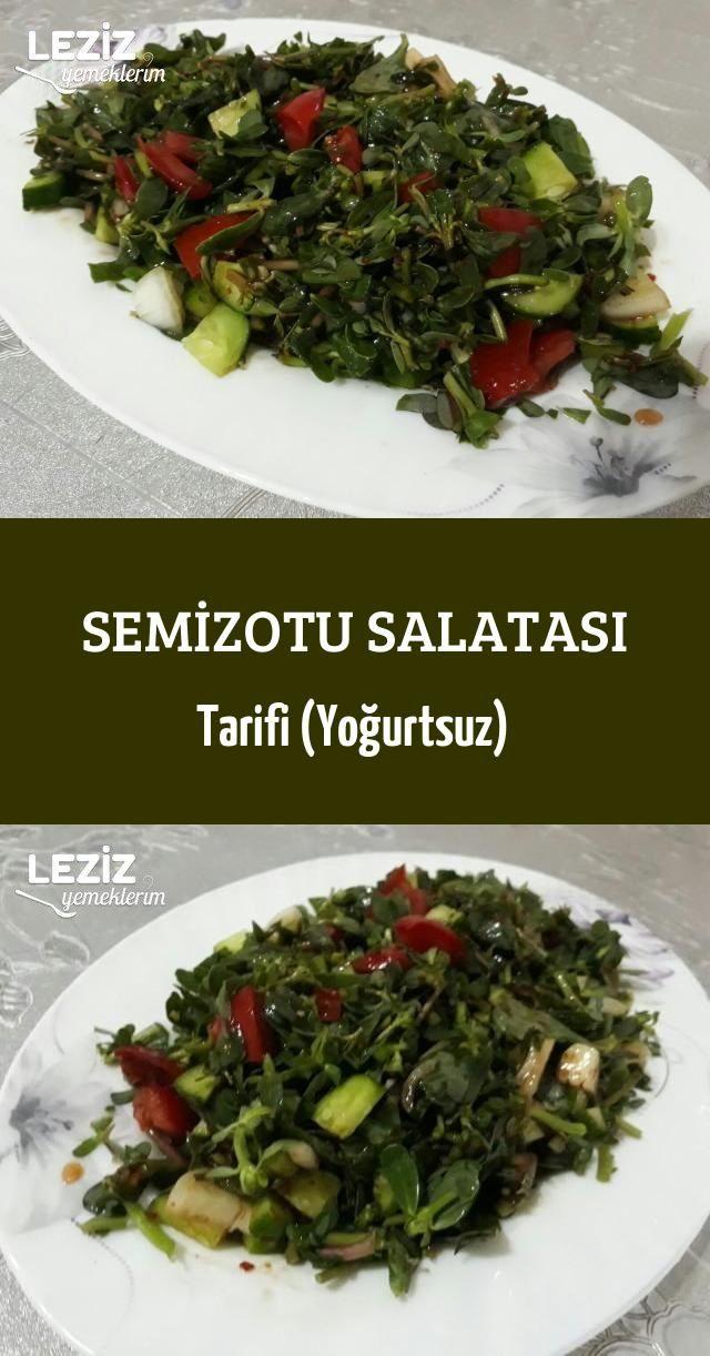 Semizotu Salatası Tarifi (Yoğurtsuz) - Leziz Yemeklerim