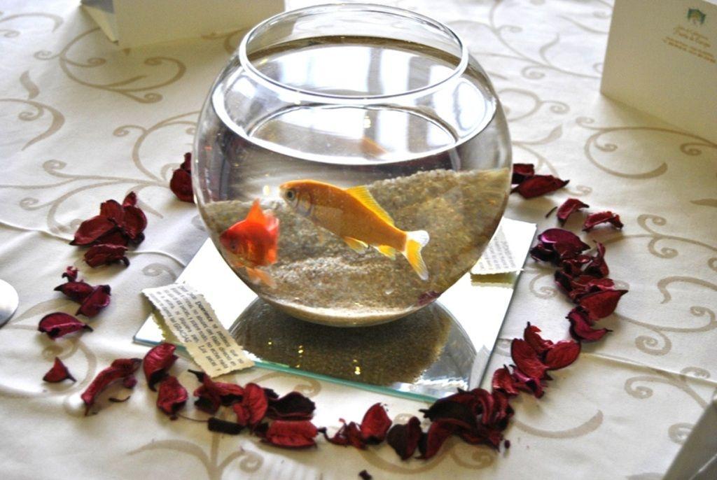Arreglos de mesa para boda con peceras y peces buscar - Decoraciones de peceras ...