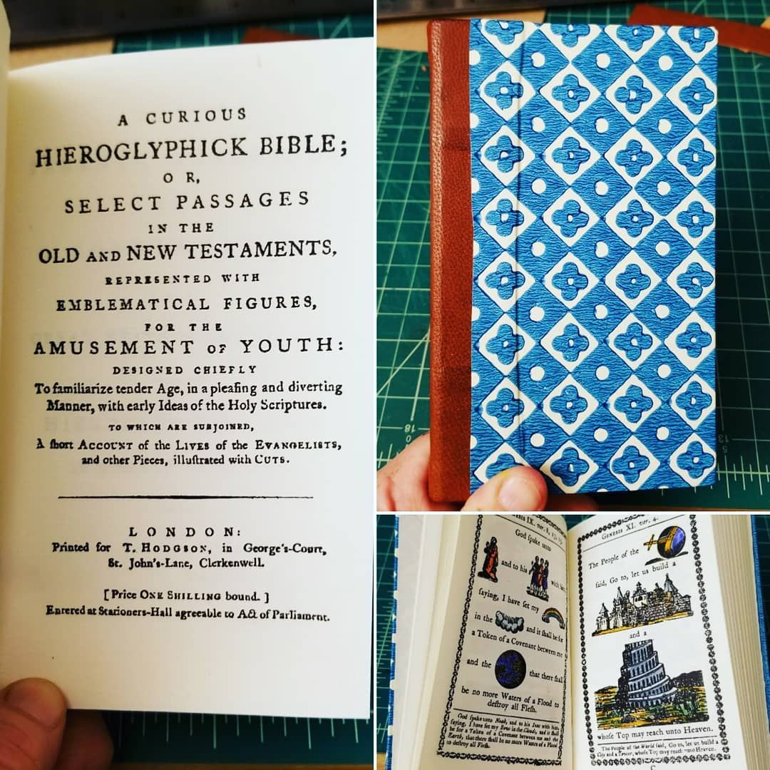A Curious Hieroglyphick Bible bound in scaleboard, covered in block ...