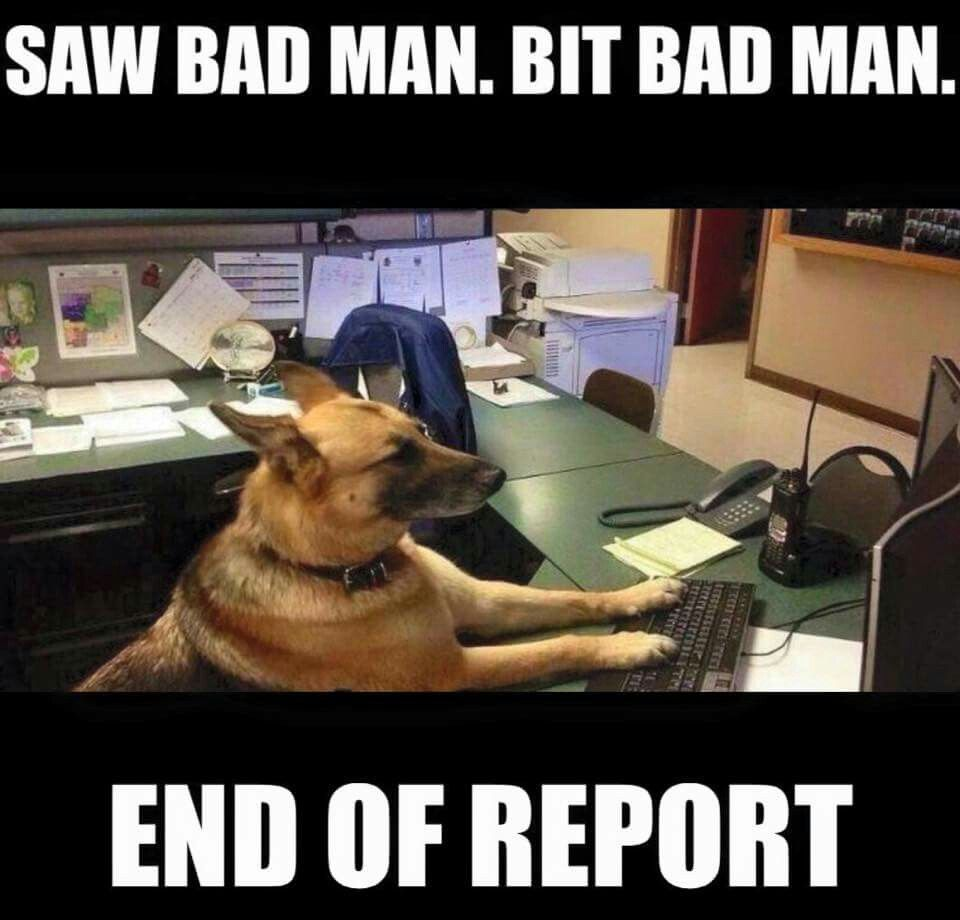 Saw bad man  Bite bad man  End of report  | Animals | Funny