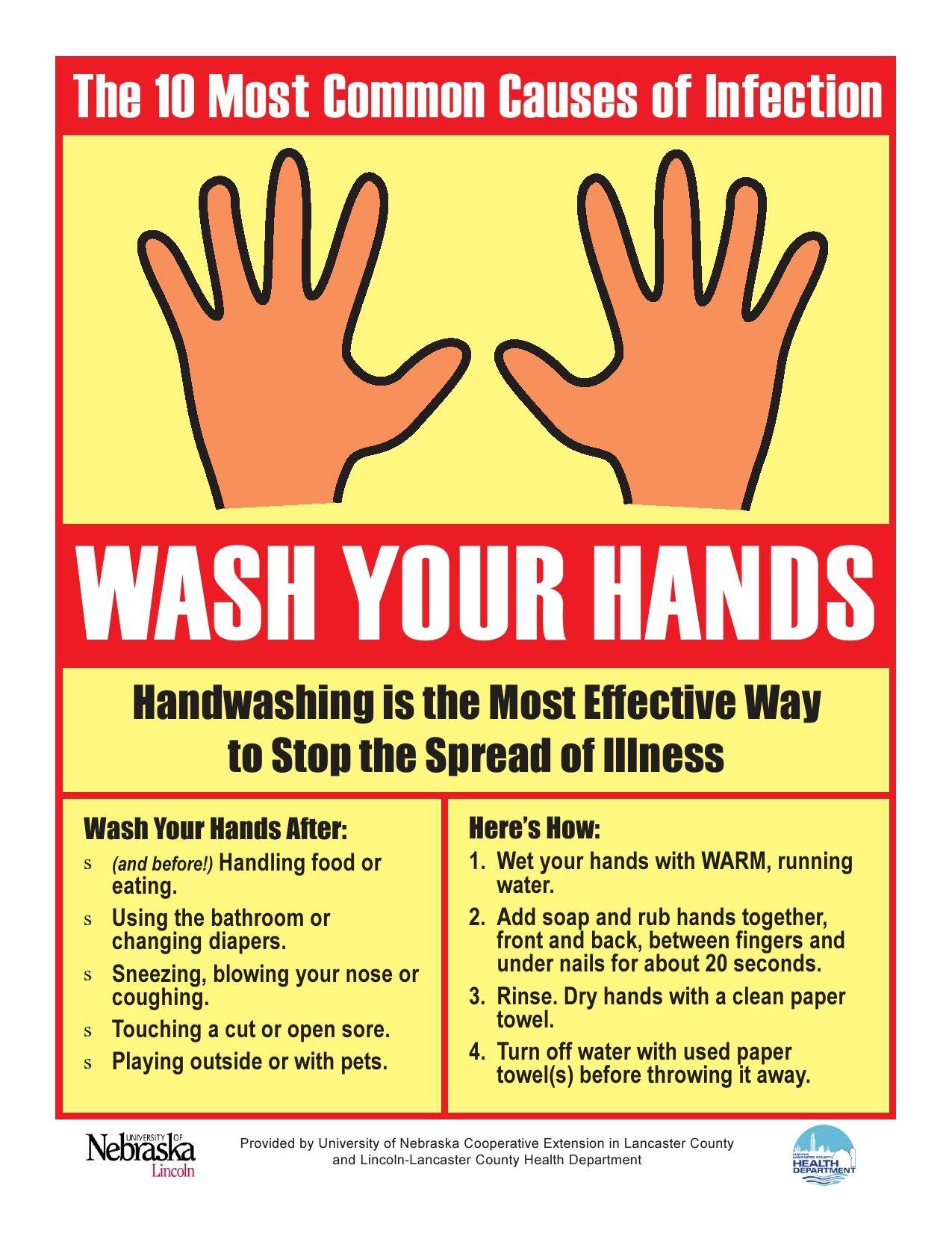 Wash Your Hands! | Hand hygiene | Kitchen safety tips, Hand