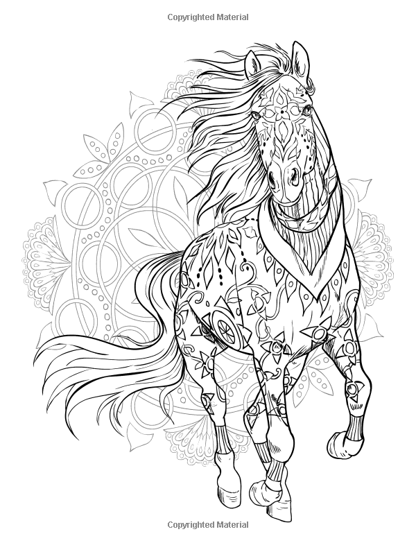 Kleurplaat Fries Paard Pin By Grammy Fran On Horses Horse Coloring Pages Adult