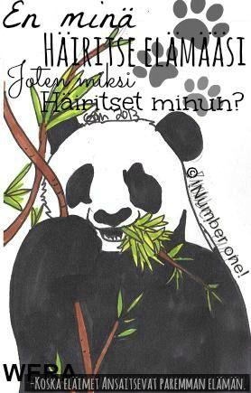 WERA panda (c) !Number one!