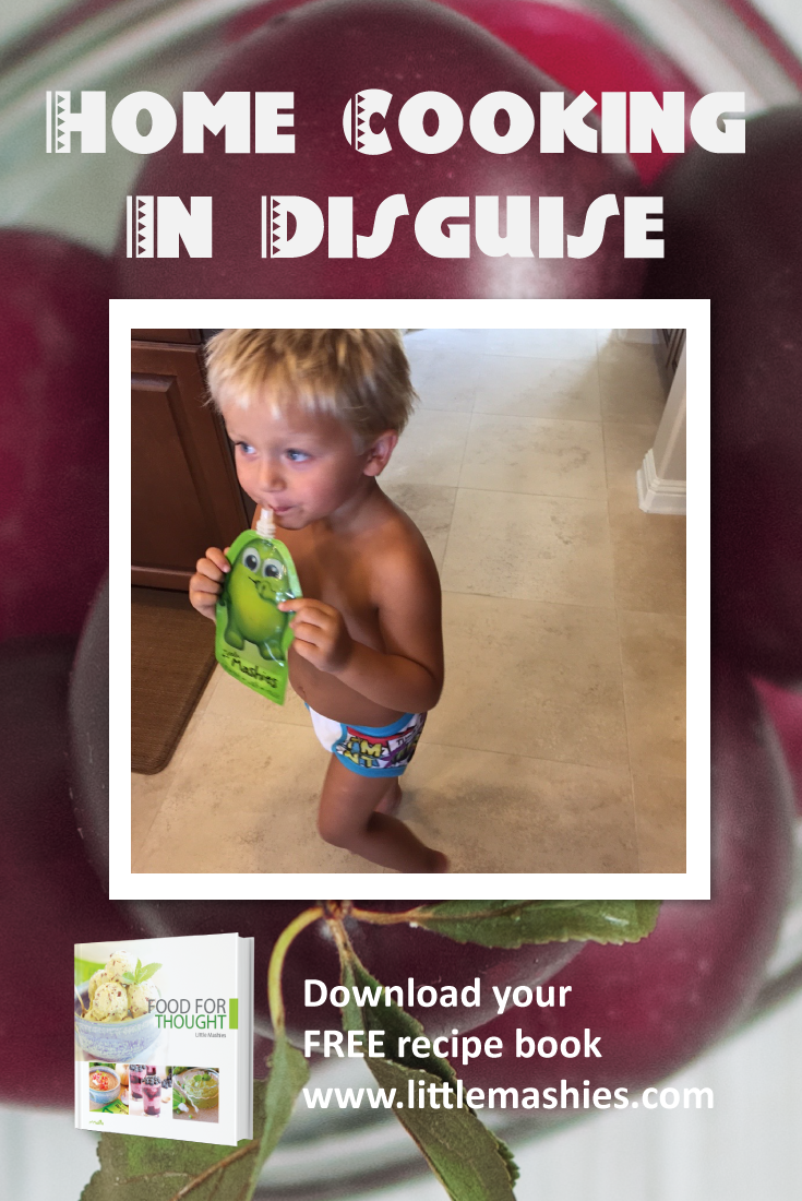 Healthy kids snack recipes to put inside reusable food pouches free healthy kids snack recipes to put inside reusable food pouches free recipe book from https forumfinder Image collections