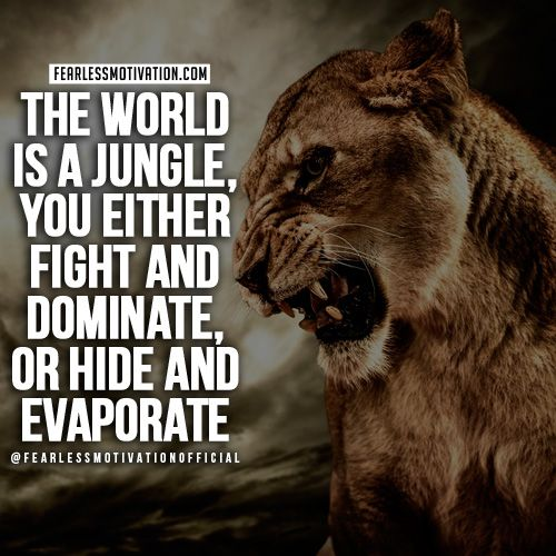 Motivational Inspirational Quotes: 30 Of The Best Lion Quotes In Pictures