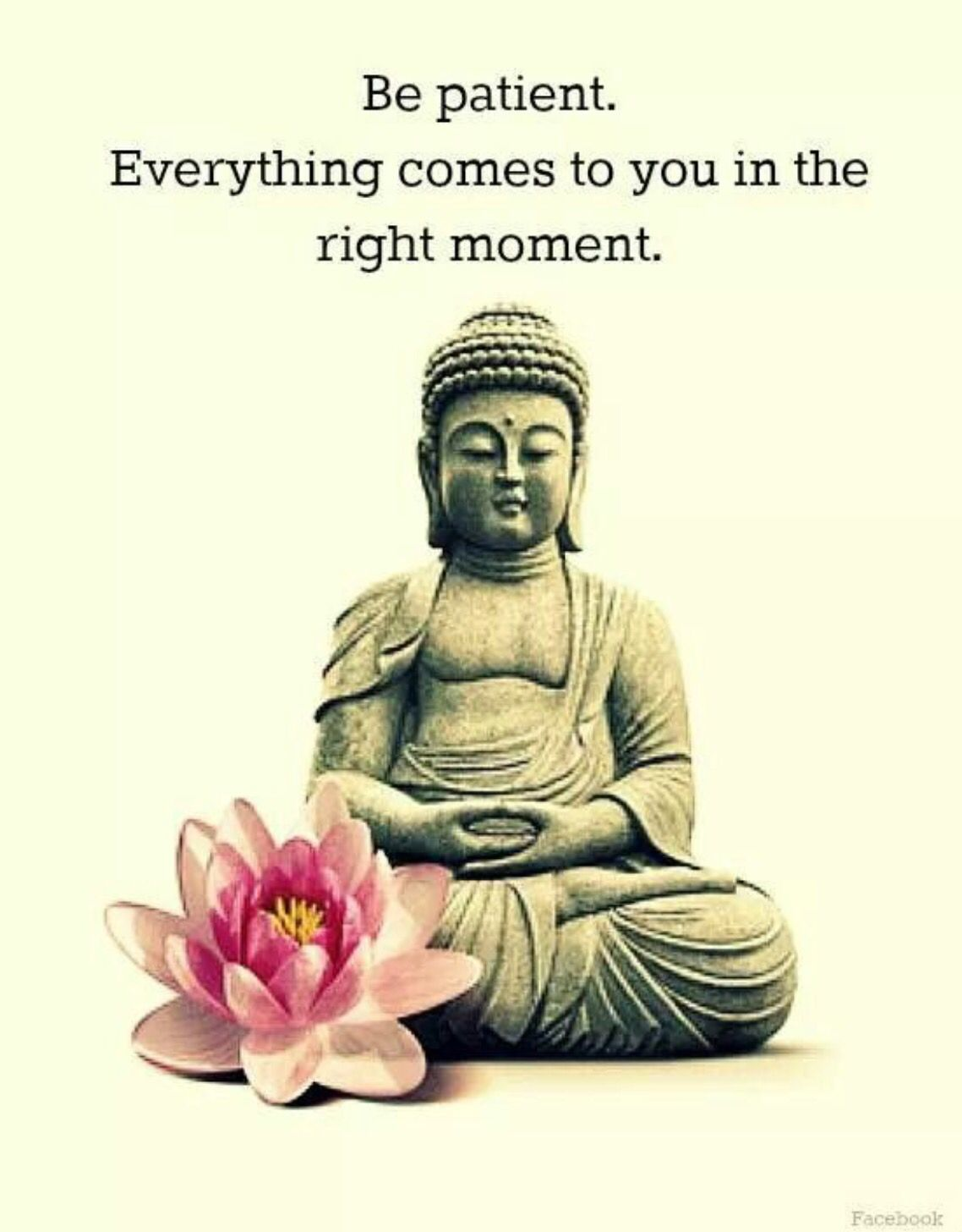 Buddhist Quotes On Love Words To Live Words Of Inspirations  Pinterest  Words