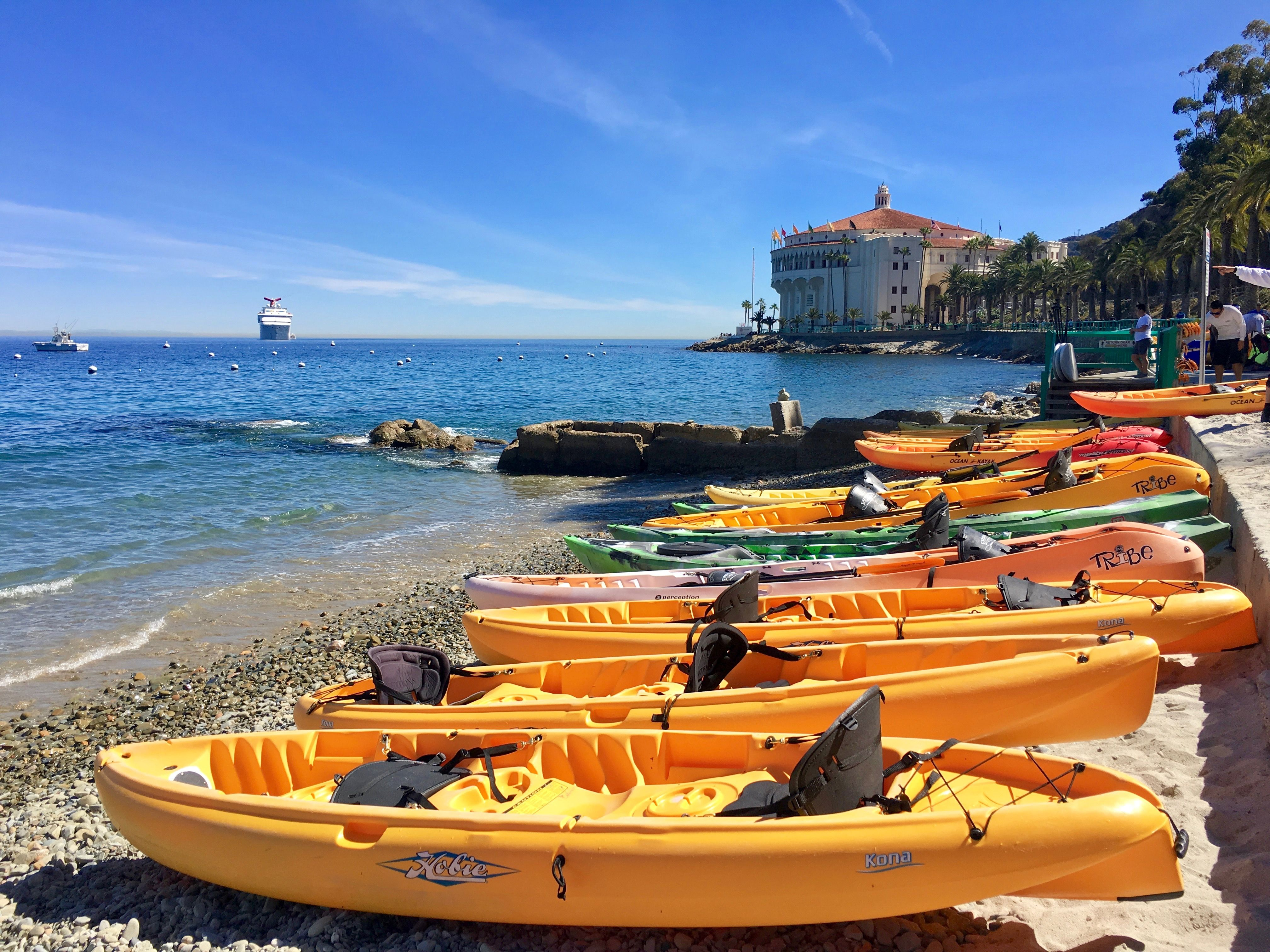 6 adventurous things to do in catalina island