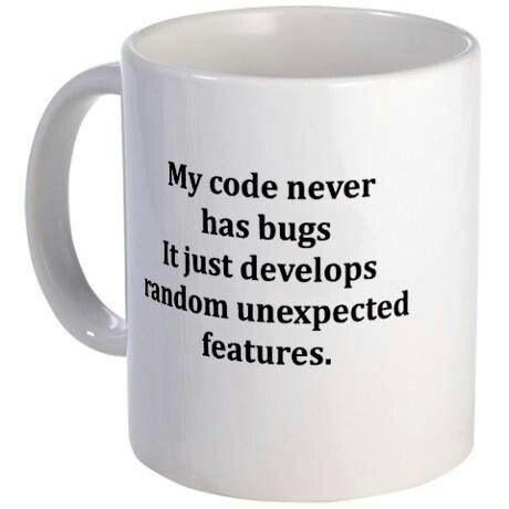 My code never has bug...